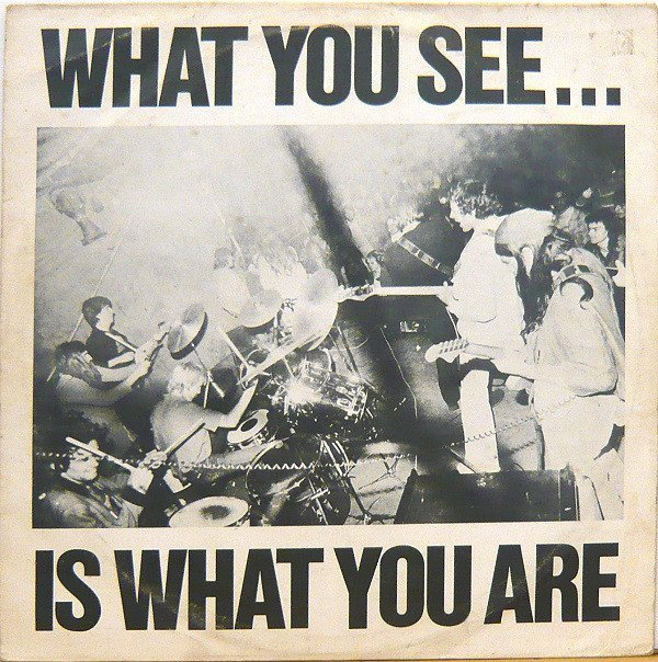 Alternative Tv - What You See... Is What You Are