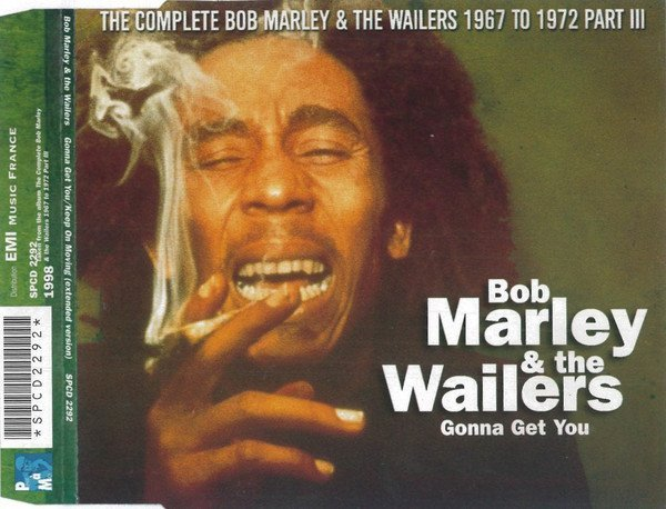 Bob Marley And The Wailers - The Jamaican Dub Versions (Volume 2)
