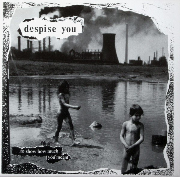 Despise You / Agoraphobic Nosebleed - ... To Show How Much You Meant / Mechanized Flesh