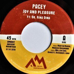 Dr Ring Ding - Joy And Pleasure
