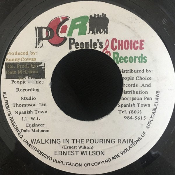Ernest Wilson - Walking In The Pouring Rain