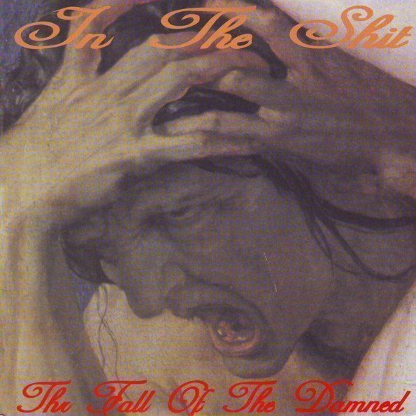In The Shit - The Fall Of The Damned