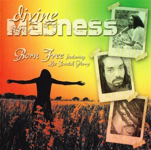 Lee Perry Meets Bullwackie - Divine Madness