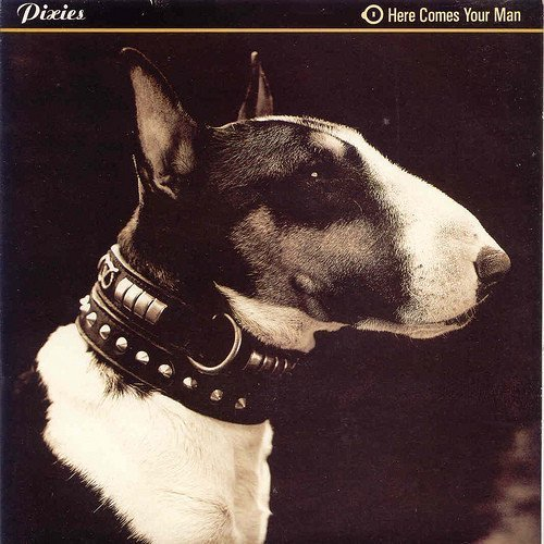 Pixies - Here Comes Your Man