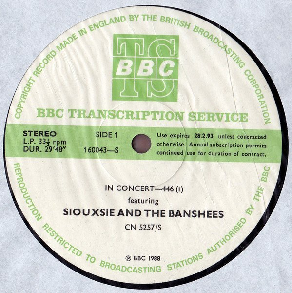Siouxsie  The Banshees - In Concert-446