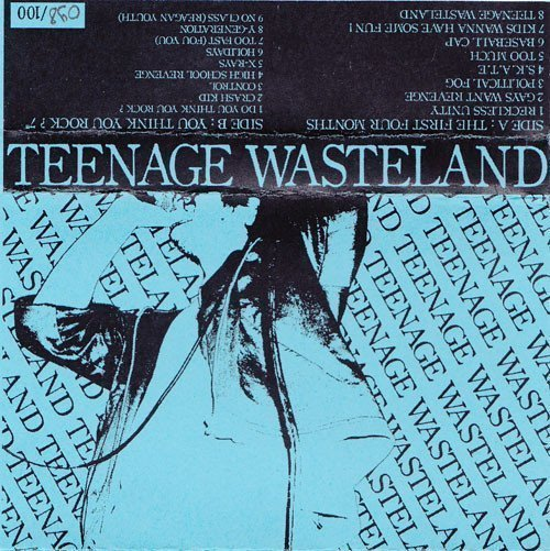 Teenage Wasteland - The  First Four Months / You Think You Rock ?