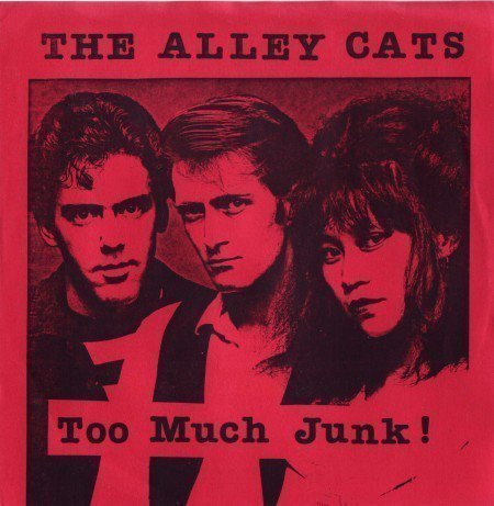 The Alley Cats - Too Much Junk