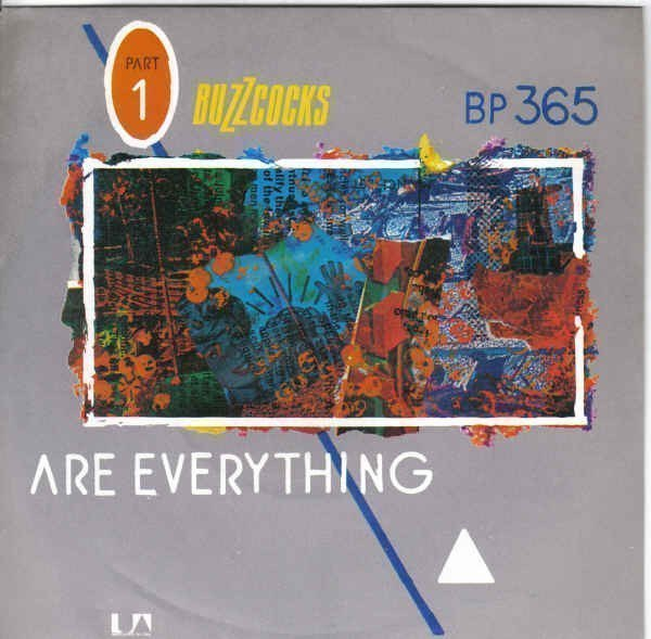 The Buzzcocks - Are Everything / Why She