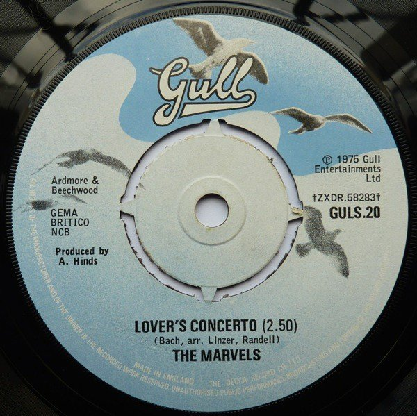 The Marvels - Lover