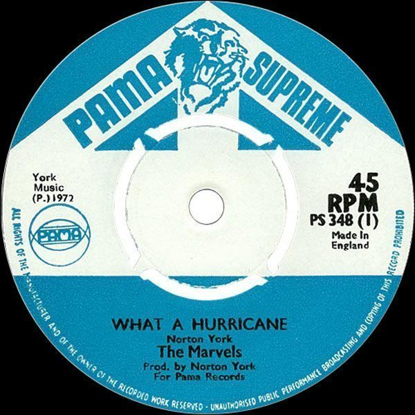 The Marvels - What A Hurricane