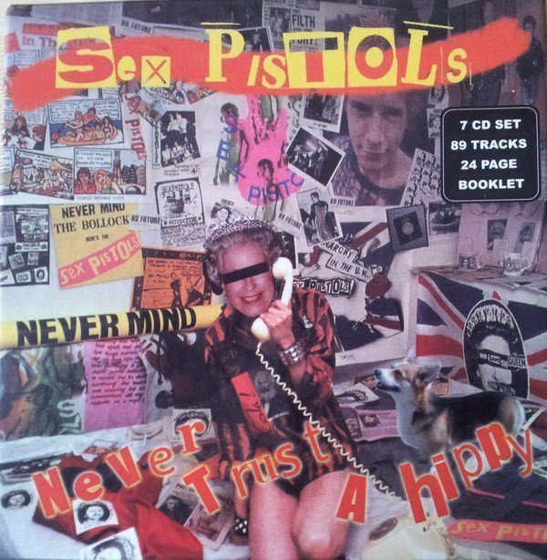 The Sex Pistols - Never Trust A Hippy