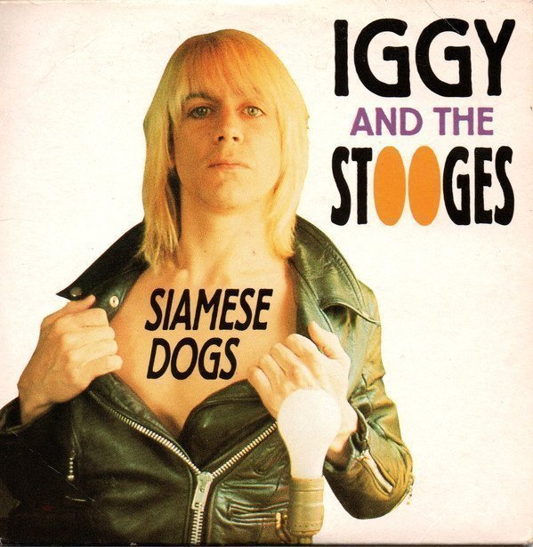 The Stooges - Siamese Dogs