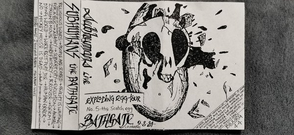 The Subhumans - Live Bathgate