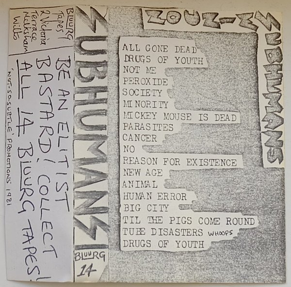 The Subhumans - Live in Swindon