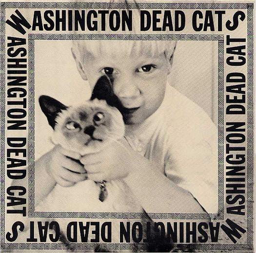 Washington Dead Cats - Ghost Can