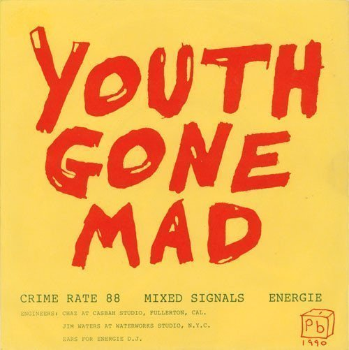 Youth Gone Mad - Crime Rate