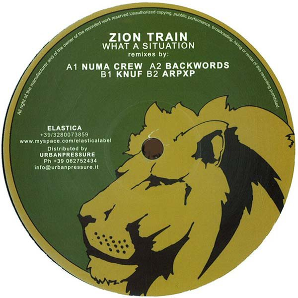 Zion Train - What A Situation (Remixes)
